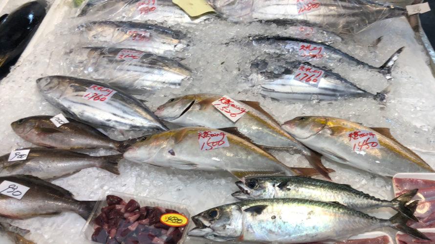 高知 でめちゃめちゃ 新鮮 な 魚 を安く手に入れるなら「 久礼大正町市場 」がオススメ!